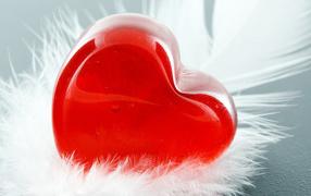 heart, feather, Macro