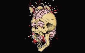 Skull, bang, teeth, brain, anarchy, Skeleton