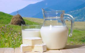milk, cheese, Landscape, food