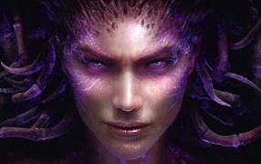 видео игры, Starcraft: Heart of Swarm, Sarah Kerrigan Queen Of Blades, Starcraft, Старкрафт