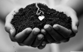 the land of love, heart, medallion