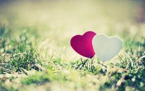 Два сердечка на траве