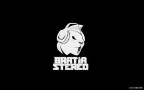 Bratia Stereo new project Basta