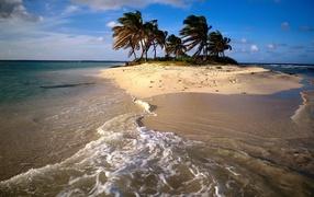 Песчаный Остров с пальмами