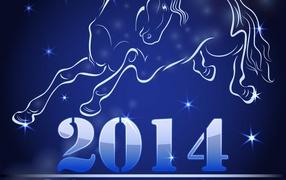 Celebrating New Year 2014