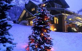 Новогодняя елка в зимнем лесу