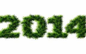 С Новым 2013-2014 годом
