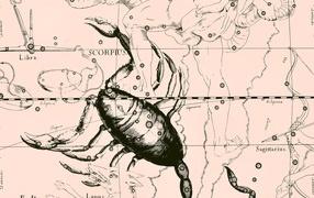 Star chart, scorpion, pink