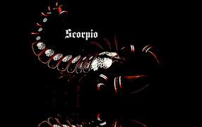 Scorpio, creative picture