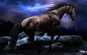 Черный конь скачет по реке