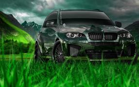 Дух свободы с BMW X5