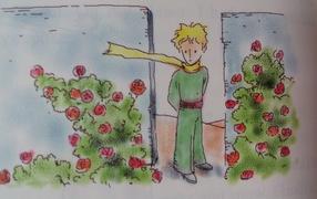 Книга о приключениях маленького принца