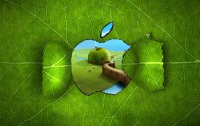 Apple на листке