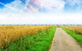 Dreamy world path