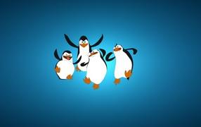 Penguins in joy
