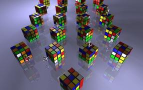 The Rubik's Cubes