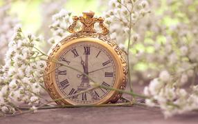 Pocket watch in white flowers