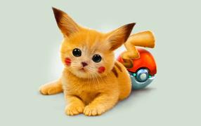 Red kitten pokemon