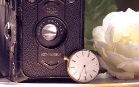 Retro camera & rose