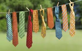 Мужские галстуки на веревке