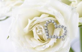 White roses and heart of white gemstones