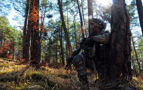 Солдат прячется за деревом