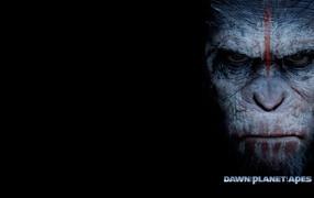 Known movie Planet of monkeys Revolution