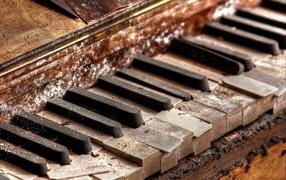Старый гнилой рояль