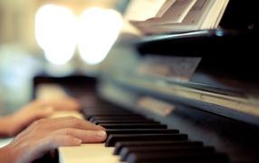 Руки лежат на клавишах