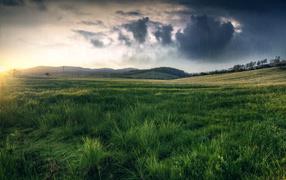 Черные тучи над полем