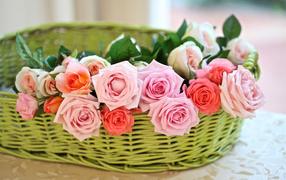 Цветы розы в корзине