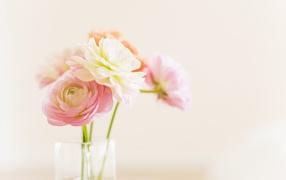 Цветы в стеклянном кувшине