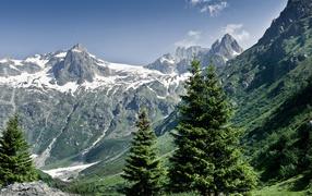 Снежные горы и деревья