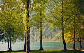 Спокойная весенняя река