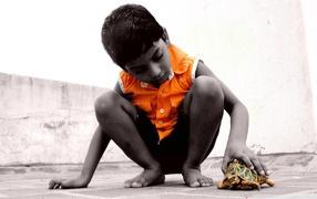 Ребенок с черепахой
