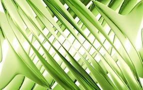 Зеленое переплетение