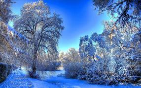Тропа вдоль замерзшей реки