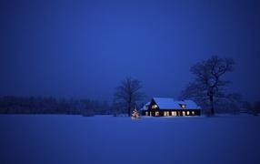 Синева зимней ночи