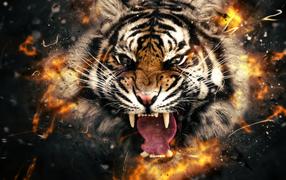 Тигр и тигрица любовь картинки