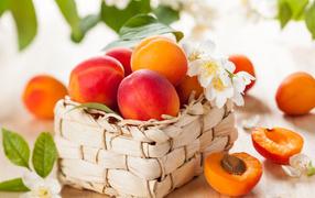 Аппетитные спелые персики на корзине бери столе