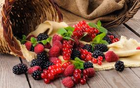Свежие ягоды ежевики, малины равным образом красной смородины из корзиной для столе