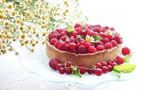 Пирог из ягодами малины равно смородины на столе  со ромашками