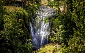 Красивый водоскат стекает вместе с утеса во лесу у покрытых зеленью деревьев