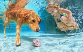 Маленькая девчуга плавает на бассейне из крупный рыжей собакой
