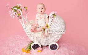 Младенец девоха сидит на коляске на розовом фоне