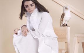 Актриса Мэйси Уильямс во белом форма не без; совой