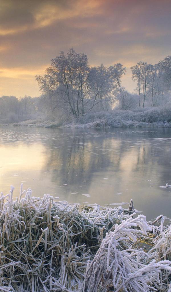 frosty morning wallpaper - photo #3