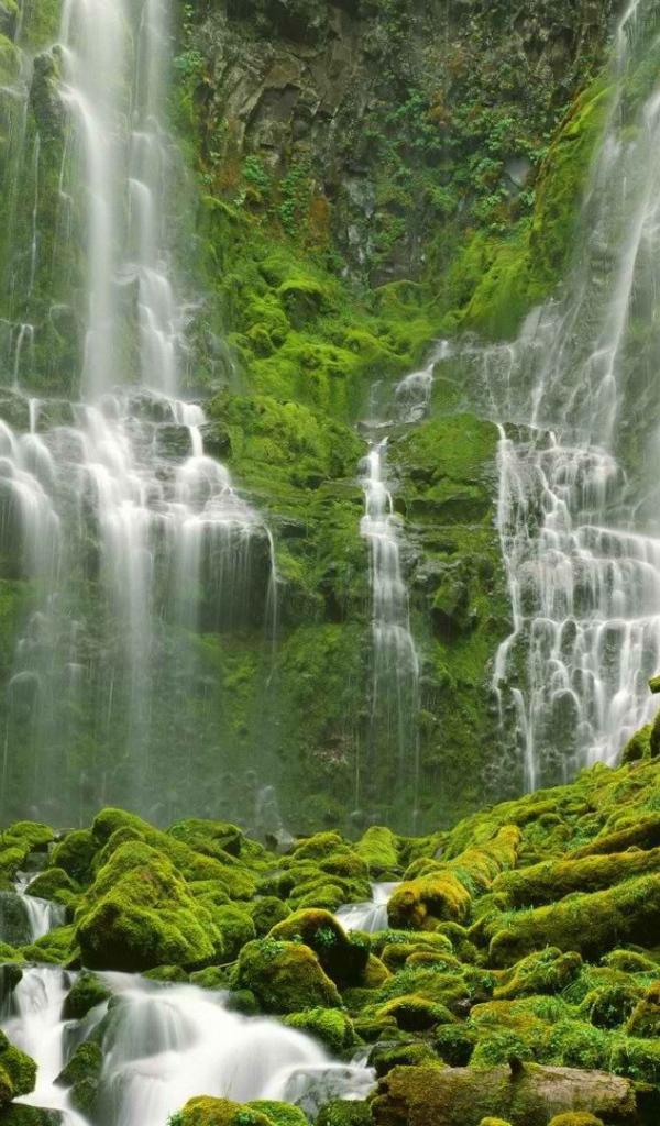 Waterfall in oregon desktop wallpapers 600x1024 - Oregon nature wallpaper ...