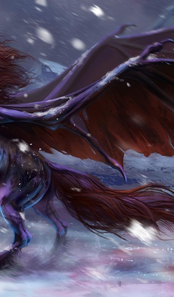 Fantastic Black Horse With Wings Desktop Wallpapers 600x1024
