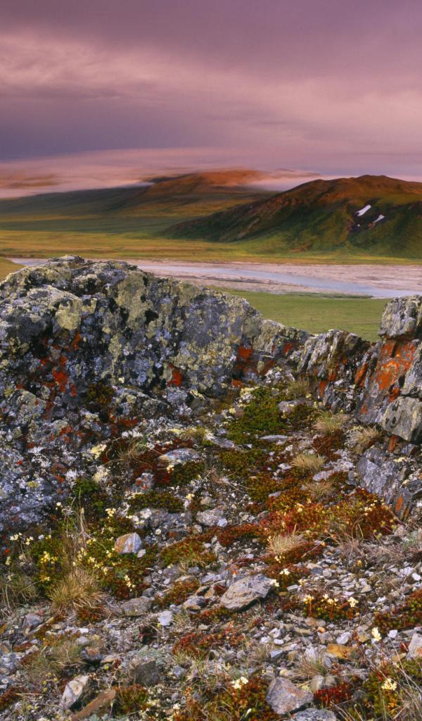 ivvavik national park canada - photo #5